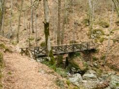 Un petit pont en bois