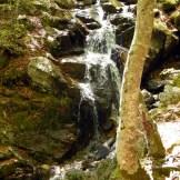 Une petite cascade sur le parcours