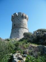 La tour de Capannella