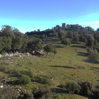 La tour trône au sommet de la colline