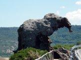 L'éléphant! A ne pas louper!