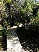Un pont en bois sur le sentier