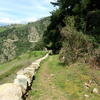 Le chemin longe un muret
