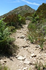 Le chemin serpente