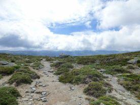 Sur le plateau du Cuscionu