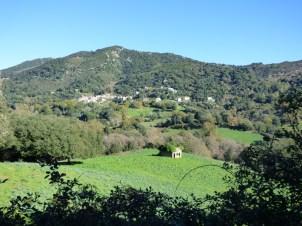Vue sur Forciolo