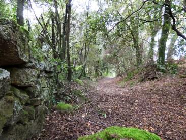 Le chemin s'élargi vers le village
