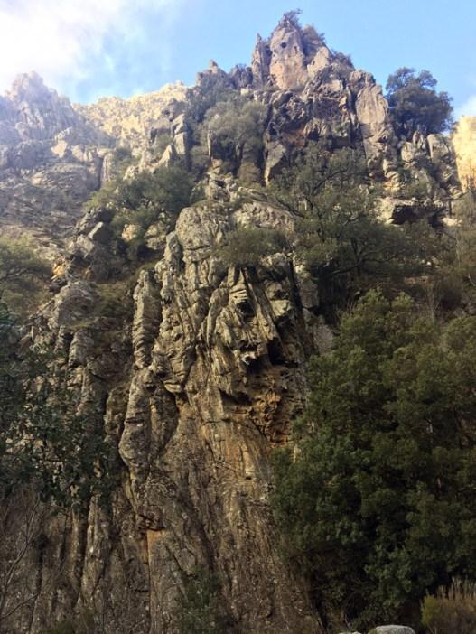 Les falaises sont pleines de tafoni