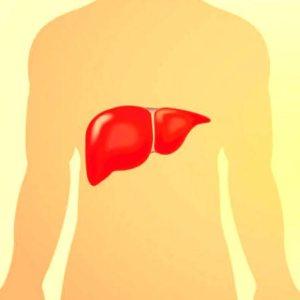 hepatitele-cronice