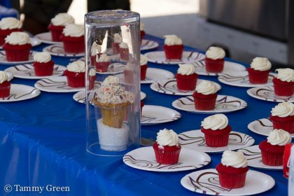 Red Velvet Cupcakes   Parrot Cage