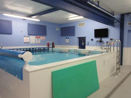 Swim Studio, Indoor Swim Lessons, Indoor Swimming Pool | Chicago ...
