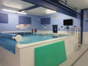 Chicago Blue Dolphins Swim Studio - One of two endless pools