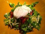 Salad Lyonnaise - poached egg, frisee, lardons, champagne vinaigrette