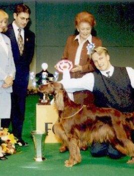 Ulkomuototuomarin tärkein ominaisuus on aito innostus ja rakkaus koiriin
