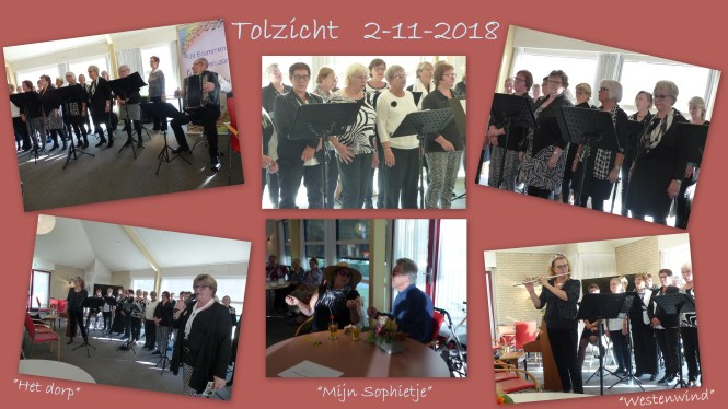 collage-tolzicht-2-11-2018