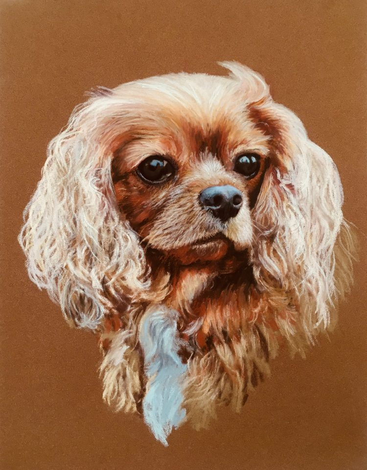 Ruby - Pastel on paper
