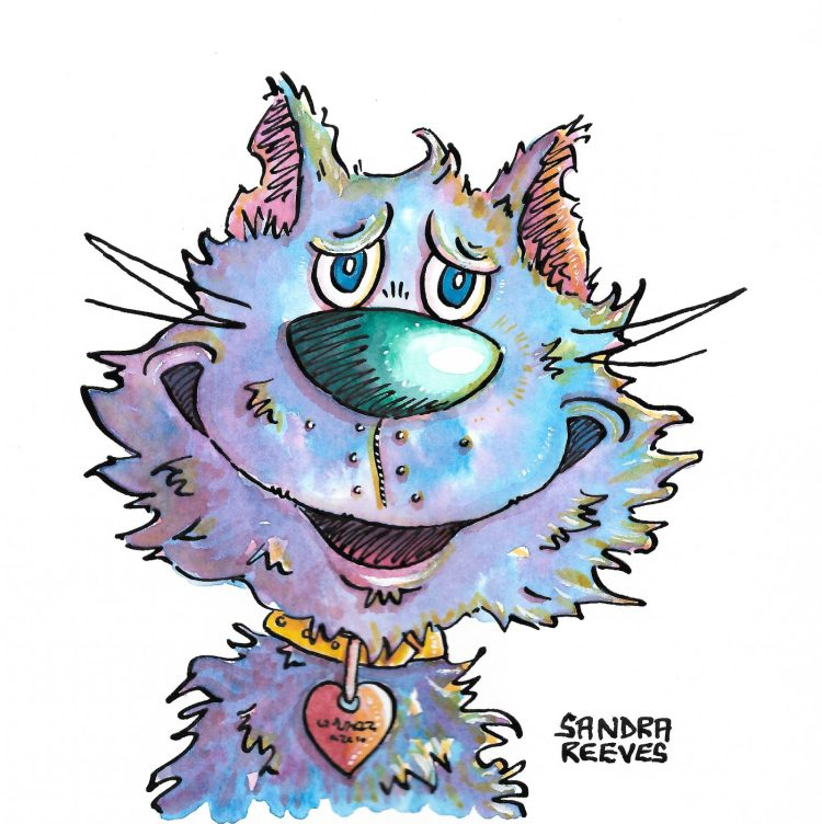 Albert the Cat by Sandra Reeves - Watercolour & Ink