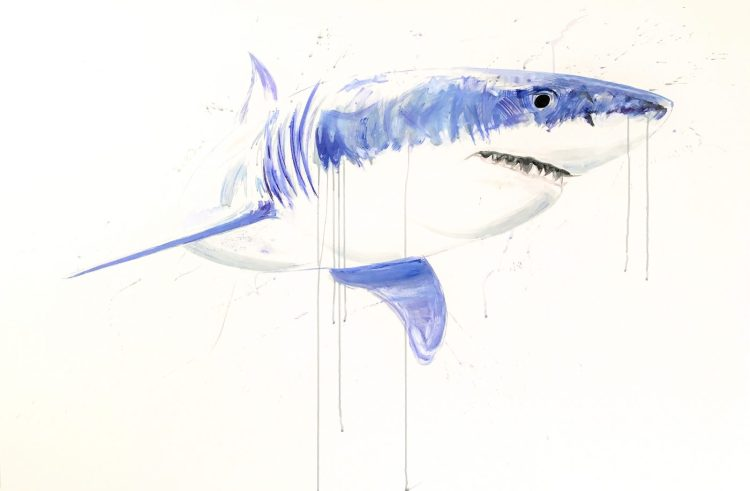 Great White IV - Oil on canvas