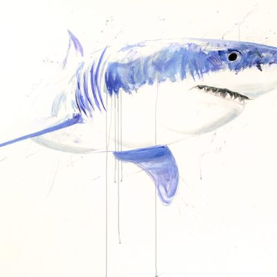 Great White IV - Oil on canvas - 1.5 x 1.0 m - by Tim Dockerill