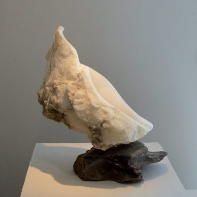 Sea Shell - Alabaster, slate - 45 x 45 x 30cm - by Jane Fremantle