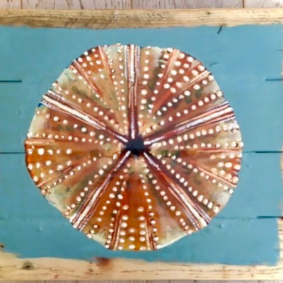 Study of Sea Urchin no 4 - Acrylics paints on reclaimed wood boards - 40 by 40 cms - by Andrew Lean