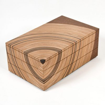 Family Tree Keepsake Box - Elm with fumed oak - 38cm (w) x 15cm (h) x 23.5cm (d) - by Edward Johnson