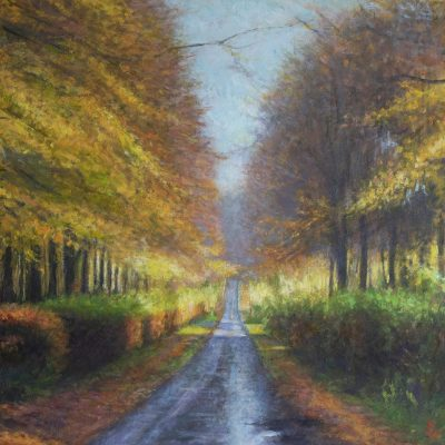 Beech trees, West Dean Estate - Oil on board - 27 x 27cm - by Richard Whincop