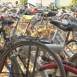 Bicycles, African Barrick Gold (Buzwagi)