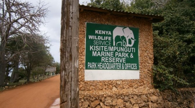 KWS Marine Park Tour Day 1: Getting to Kisite Mpunguti Marine Park