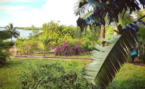 Gardens, Bomani Beach Bungalowas, Bagamoyo, Tanzania