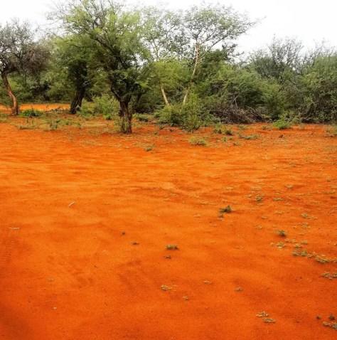 Red Earth, Botswana