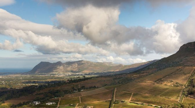 The Top 5 Wine Farms in Cape Town, South Africa