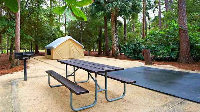 Walt Disney World S Fort Wilderness Resort And Campground Tips