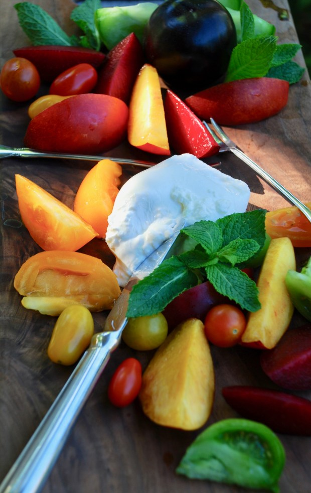 Stone fruit and burrata cheese salad. (Photo by Nancy Lindahl)