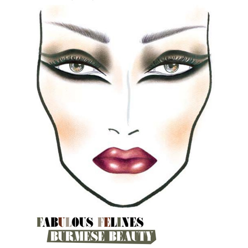 MAC fall 2010 Fabulous Felines Burmese Beauty Face Chart MAC Fabulous Felines Burmese Beauty Collection for Fall 2010   Face Chart + Makeup Tutorial