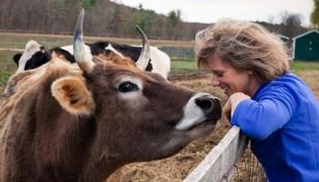 Eat, Pet, Love: Catskill Animal Sanctuary's 12th Annual Shindig
