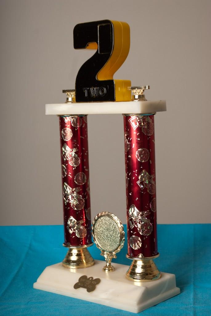 Chiditarod_trophies_2013(023)