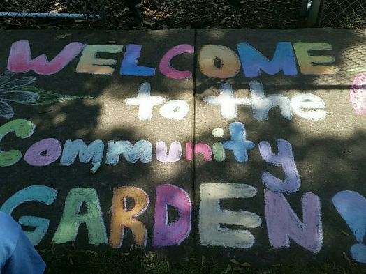 Hermitage Street Community Garden, Englewood
