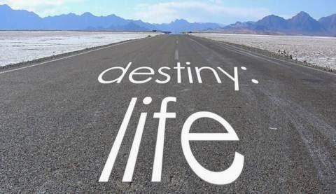 Luck, not destiny, rules human lives