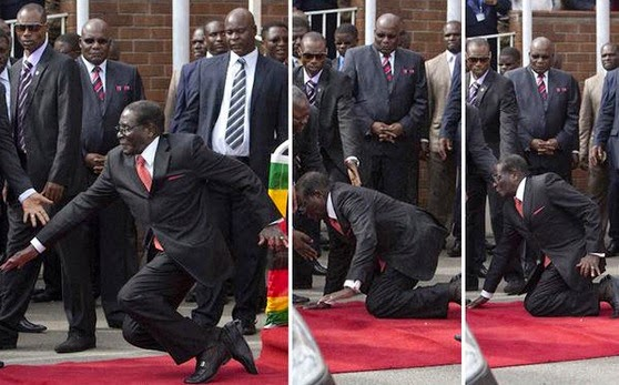 Mugabe's fall as a metaphor