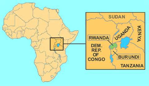 The unfolding crisis of presidential succession in Central Africa