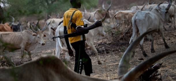 The Fulani herdsmen threat to Nigeria's fragile unity