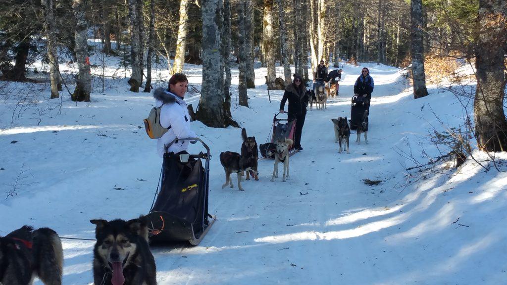 © La randonnée en traineau à chiens Vercors avec Mush and Rando