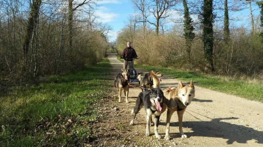 Loana en conduite de cani-kart chien de traineau Mush and Rando