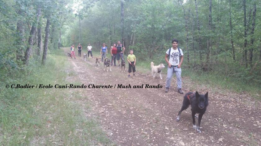 Ecole cani-rando Charente avec Mush and Rando