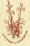 Commissione Bioetica delle Chiese Valdesi e Metodiste