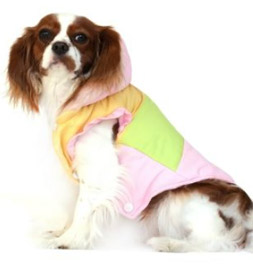 Small Dog Coats For Chihuahuas And The Other Smaller