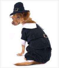 "Pilgrim Boy Costume for Dogs - Size 3 (10.75"" x 14"" - 16"" g)"