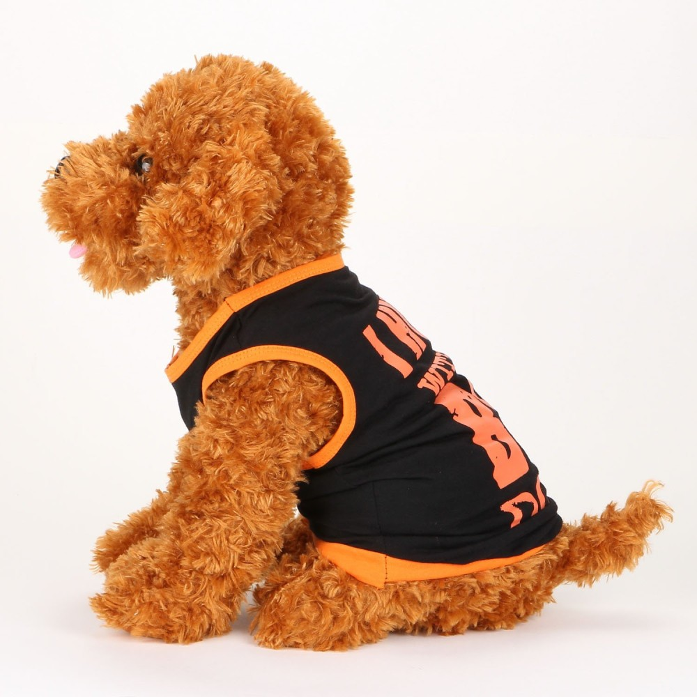 Clothing For Puppy