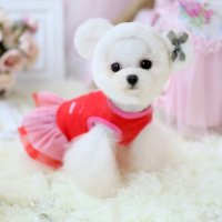 Chicpaw For Teacup Dogs Puppy Coat Chihuahua Red Bear Pet ...